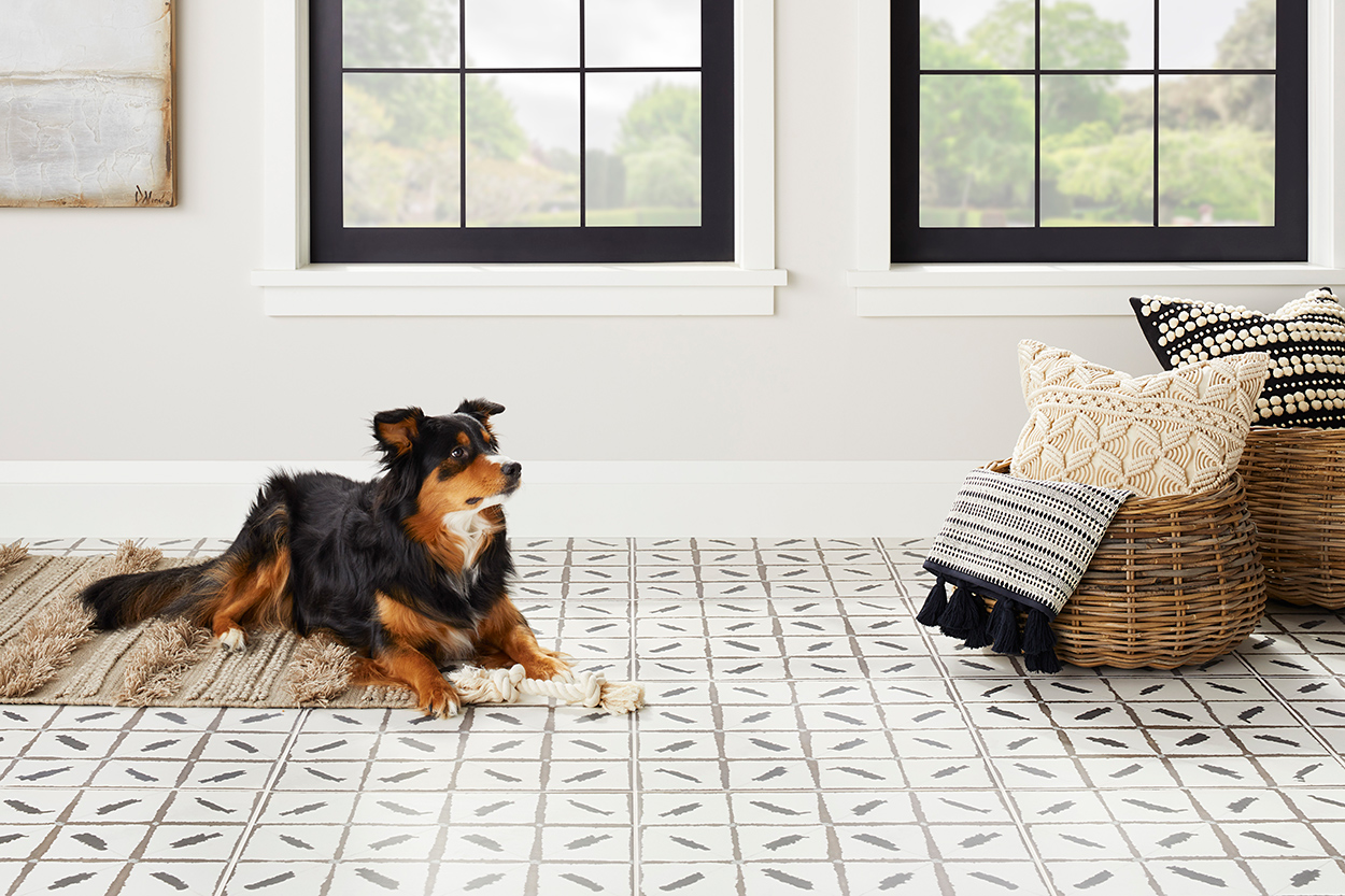 The Tile Shop-Ikat Dog Room